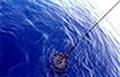 Ινστιτούτο Ωκεανογραφίας
