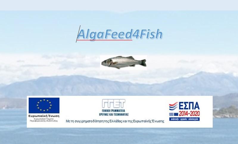 AlgaFeed4Fish